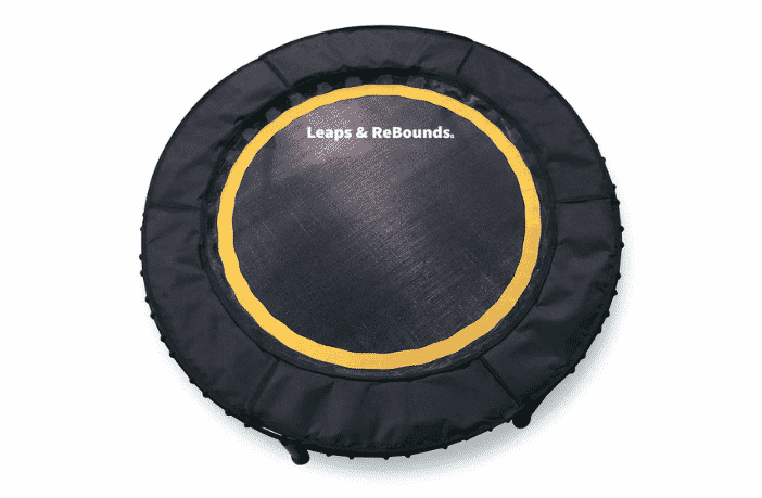Leaps & ReBounds Bungee Rebounder Review